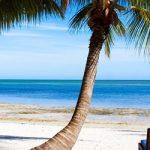 Quer passar as férias com a família na Florida – EUA? Conheça as melhores hospedagens do grupo Registry Collection.