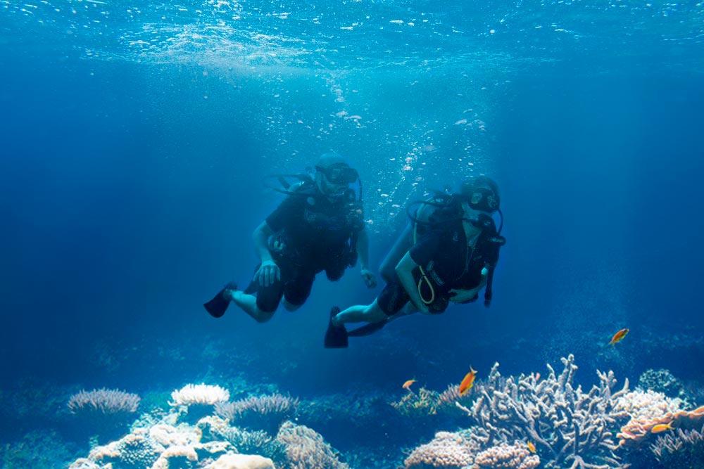 Dicas para a prática de mergulho em alto-mar